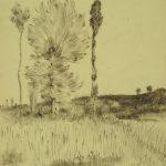 pr-et-arbres